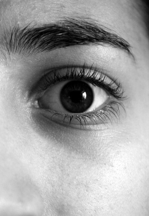eye eyebrows eyelashes