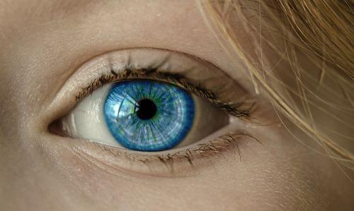 eye blue eye iris