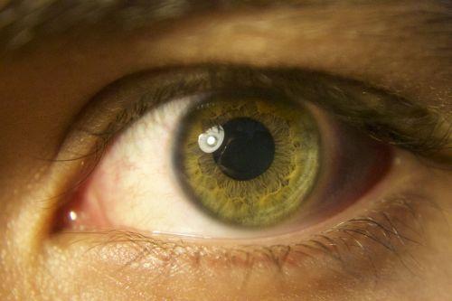 eye green pupil