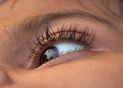 eye eye lid eye ball