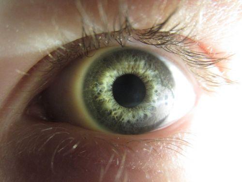 eye colors portrait