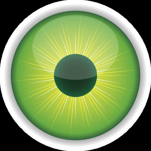 eye green iris