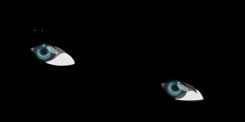 eye eyebrows eyelash