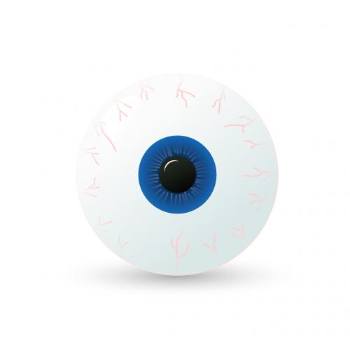 eye eyeball iris