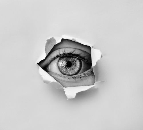 eye look spy