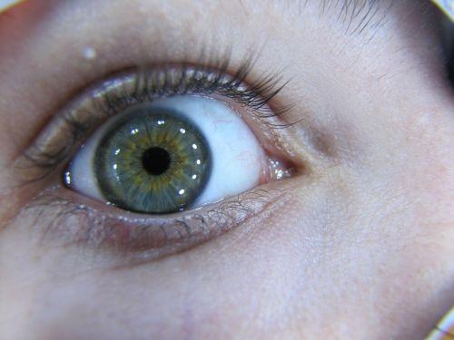 eye macro iris