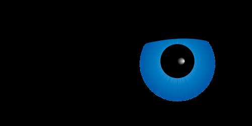 eye pupil simple