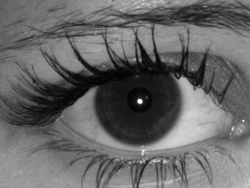 eye sight black and white