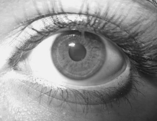 eye algae detail
