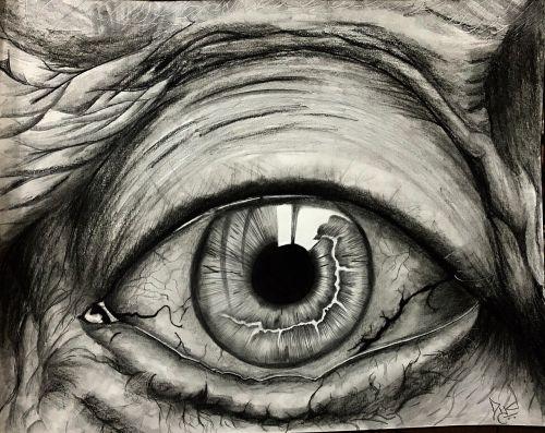 eye old man shine