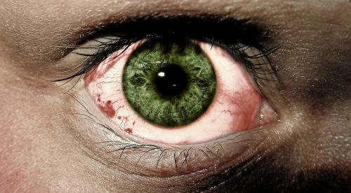 eye green eyes fear