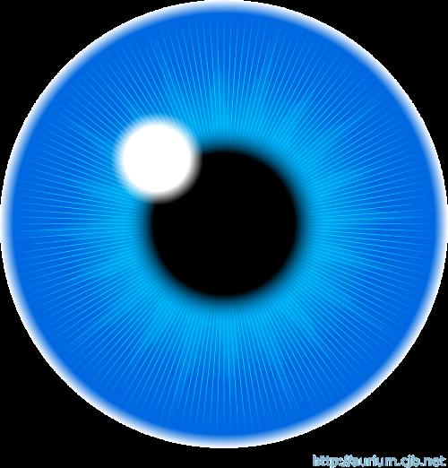 eye iris vision