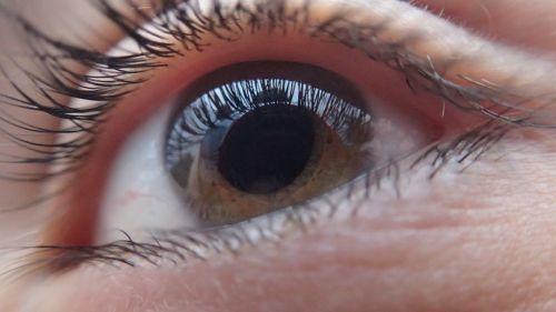 eye human face