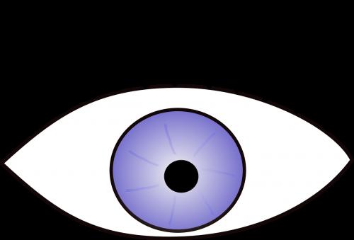 eye eyelashes open