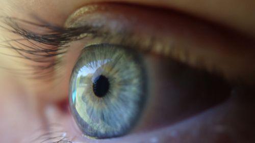 eye blue eye eyeball
