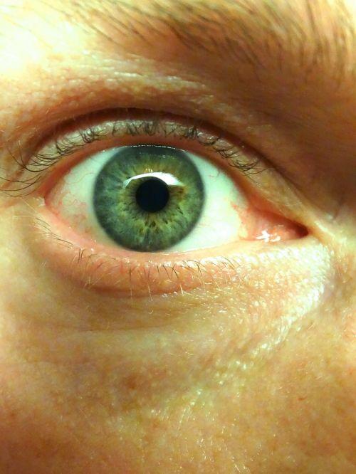 eye iris eyelashes