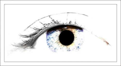 eye pupil iris
