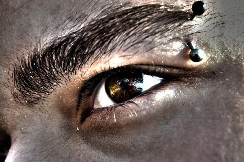 eye eyebrows algae