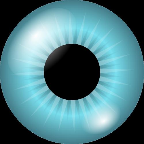 eyeball iris pupil