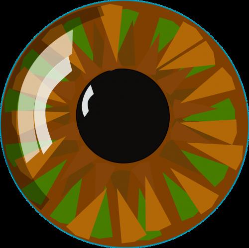 eyeball eye vision