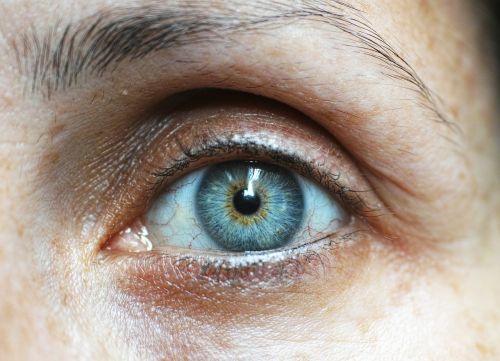eyebrow eyelash human eye