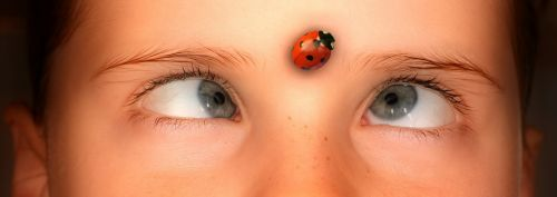 eyes squint human