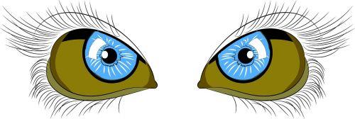 eyes line art line