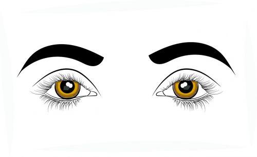 eyes sight vision
