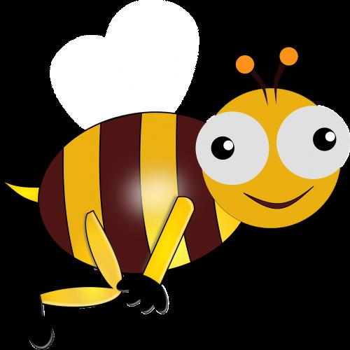 eyes bee bug
