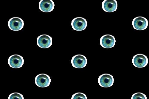 eyes iris pupil