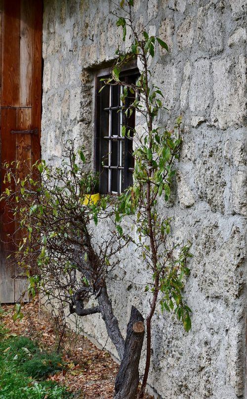 facade old romantic