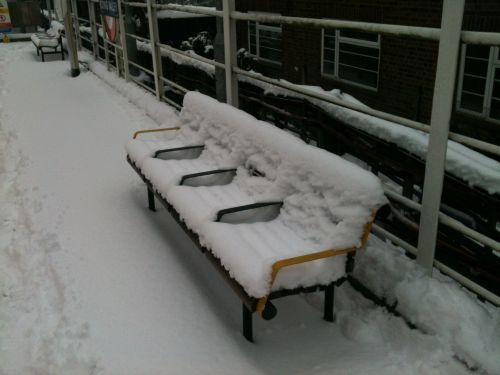 Faces On A Snow-Covered Bench