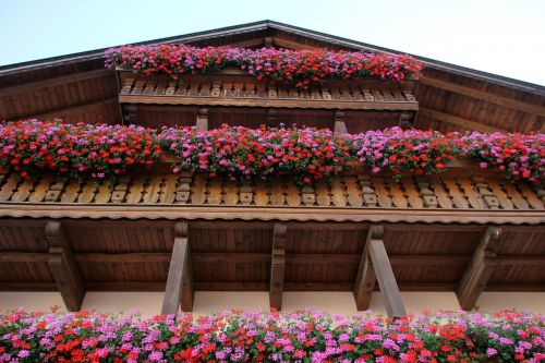 fachwerkhaus tyrol flowerpot