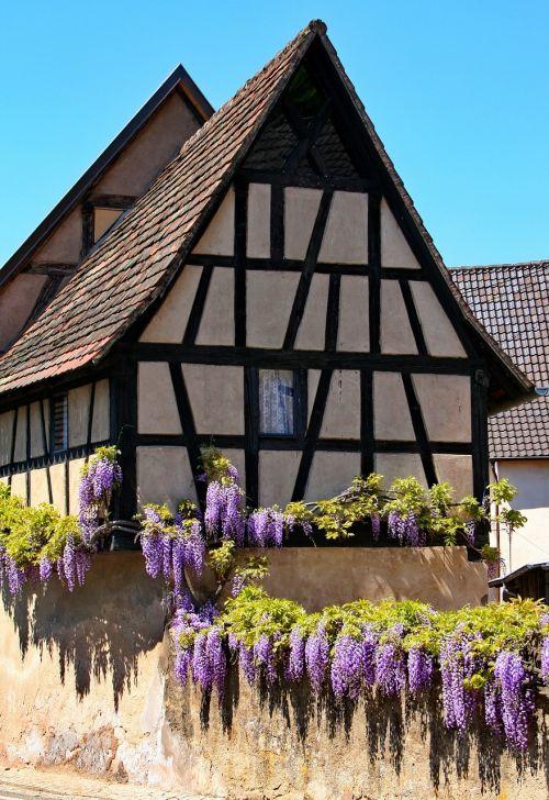 fachwerkhaus wisteria truss