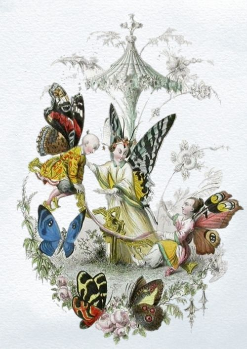 fairies vintage butterfly