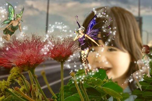 fairy  pixie  fantasy