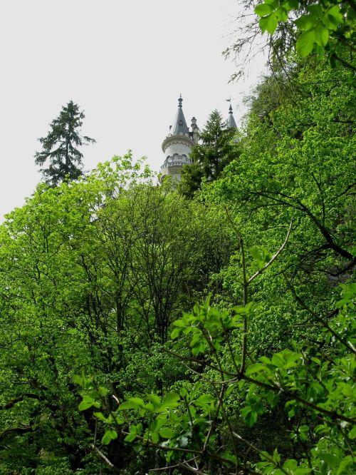 fairy castle kristin poellatschlucht