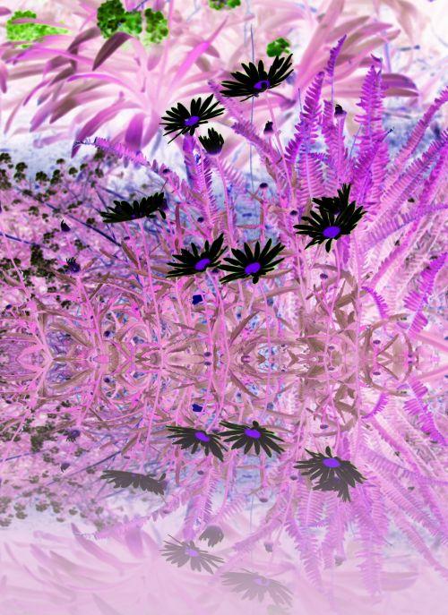 Fairy Garden Reflection