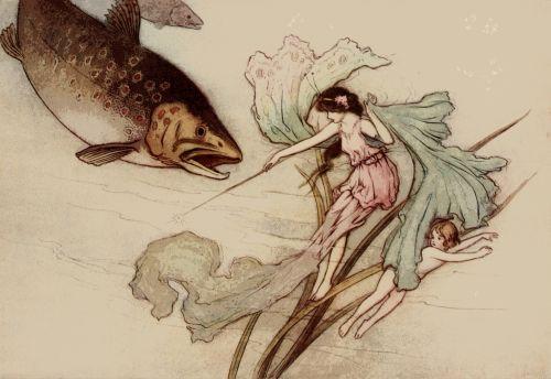 Fairy Tale Illustration