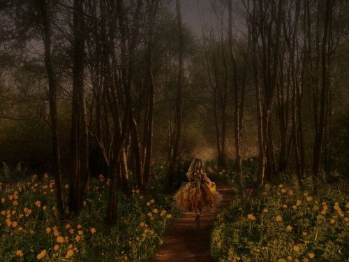 fairy tales child forest
