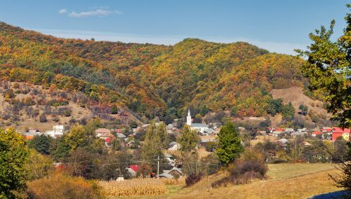 fall,landscape,nature,autumn,forest,outdoor,park,scenic,foliage,yellow,natural,fall trees,forest landscape,sunlight,season,nature landscape,autumn landscape,tree,scenery,colorful,countryside,sunset,outside,environment,landscapes,beautiful,red,sunset landscape,beautiful landscape,valley,romania,salaj