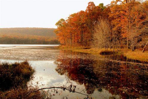 fall lake west virginia