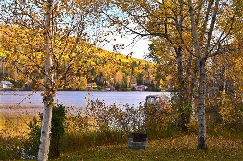 fall autumn landscape nature