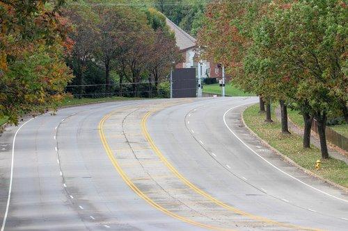 fall  trees  street