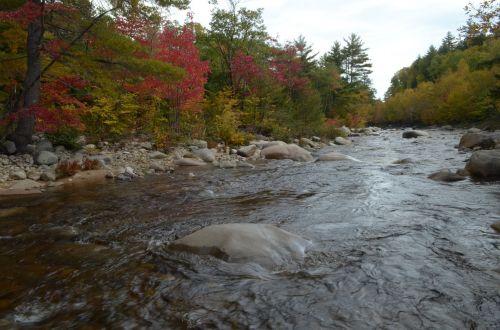 fall colors stream nature