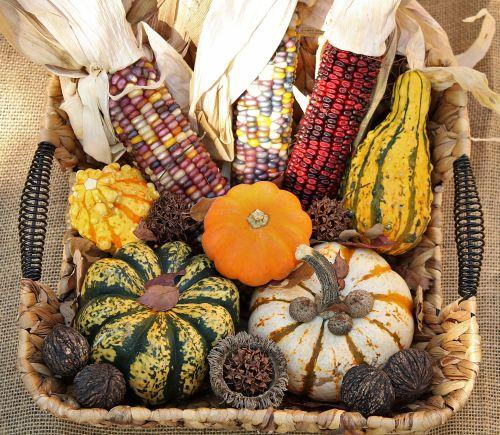 Fall Harvest 2