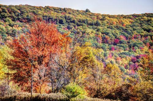 Fall Mountainscape