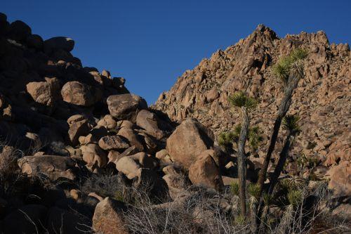 Fallen Boulders
