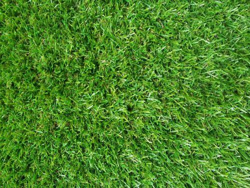 False Green Grass Wallpaper