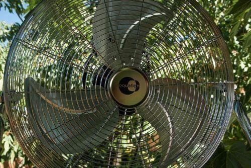 fan freshness wind